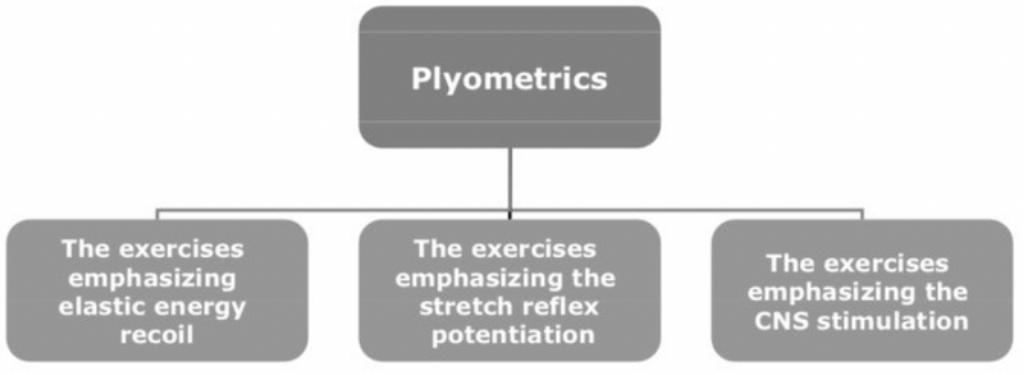 Plyometrie krachttraining